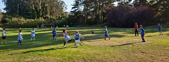 SF Tigers Soccer Club Cover photo