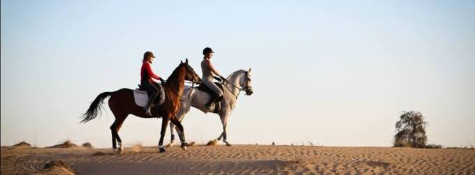 Ultimate Horse Riding Experience Cover photo