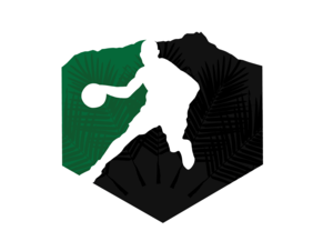 Hawaii Basketball Organization Logo
